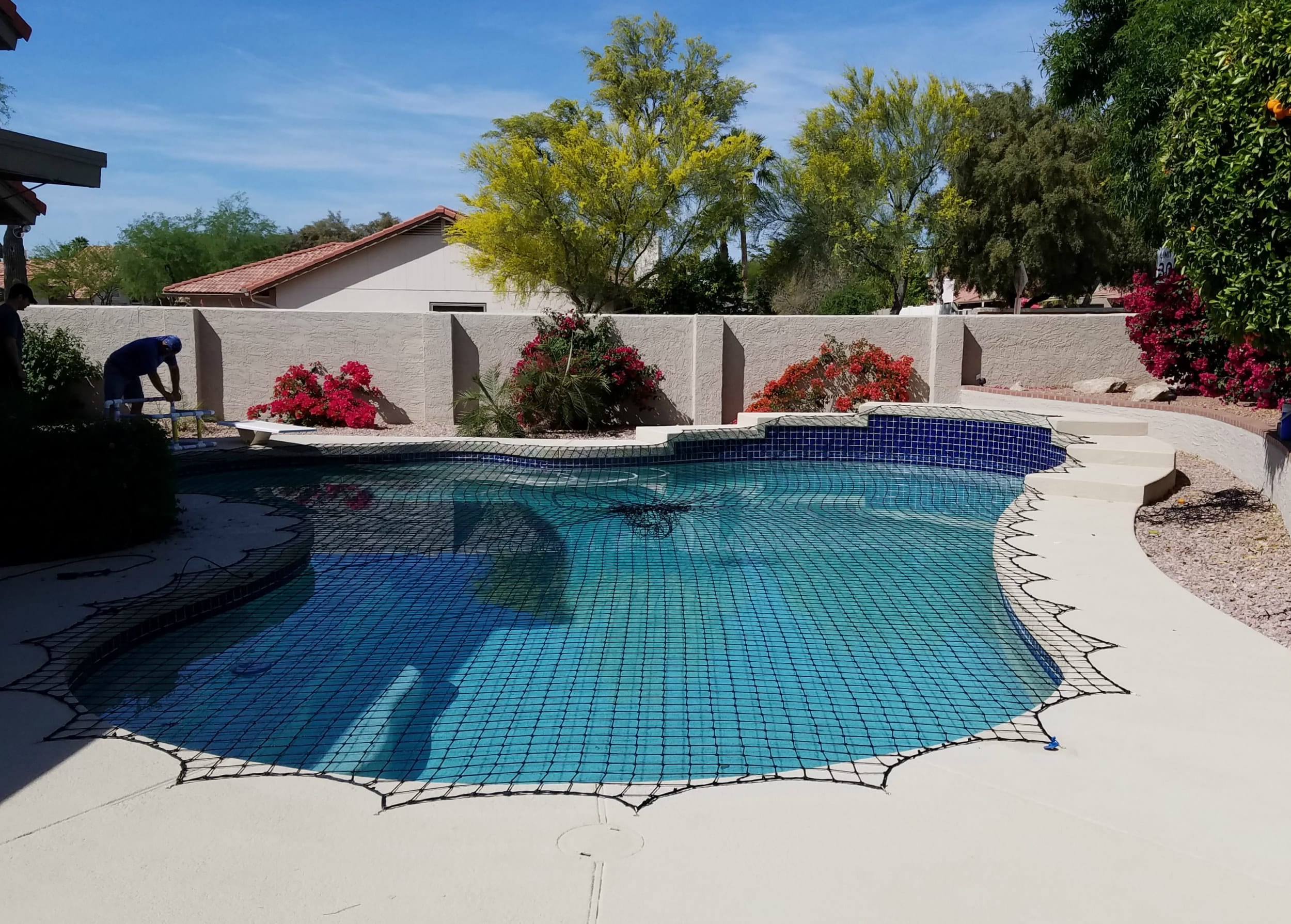 freeform pool cover